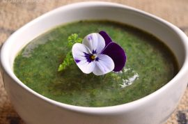 wild-nettle-soup